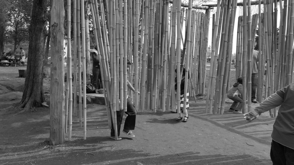 Bamboo - Wind Chimes