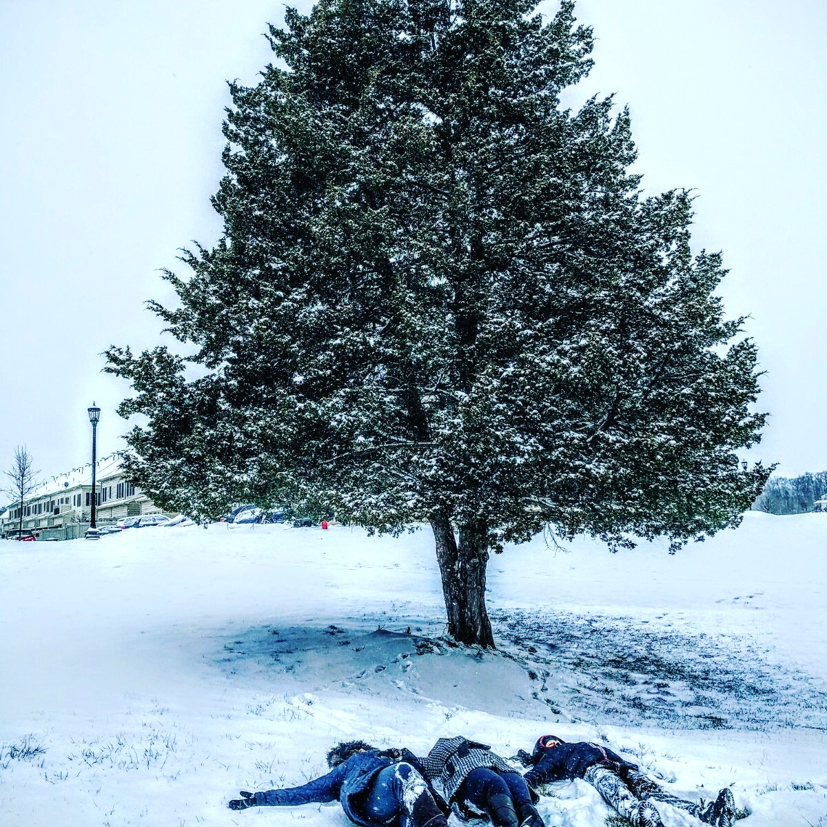 lie down in the snow